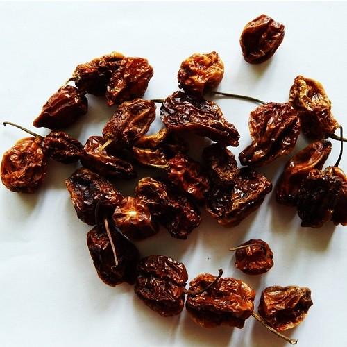 Habanero chili paprika
